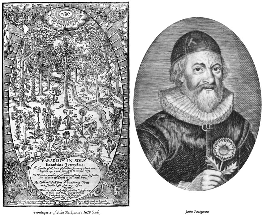Picture of John Parkinson and the frontispiece of his 1629 book